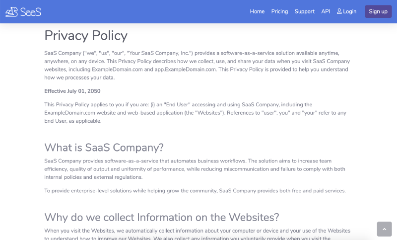Go code Example Privacy Policy for SaaS website