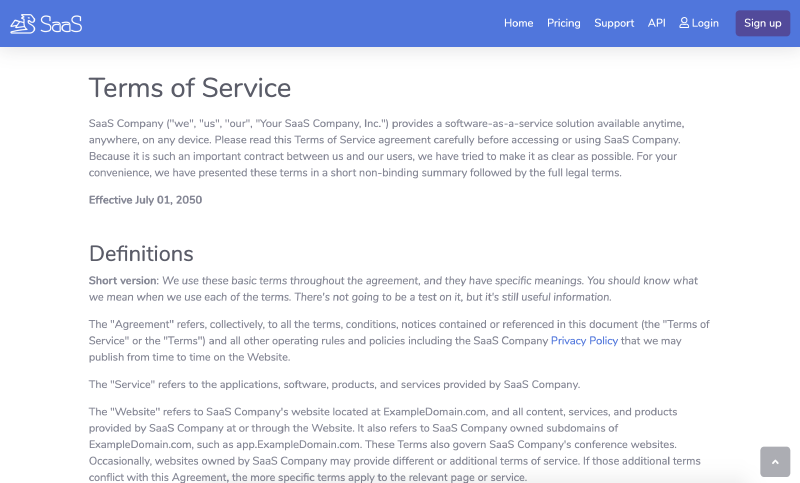 Go code Example Terms of Service for SaaS website